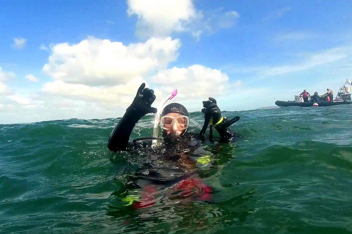 Diving at howth
